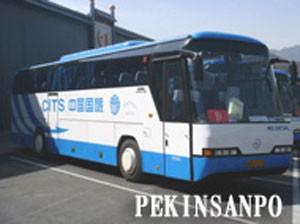 ガイド+大型バス(49名様まで)