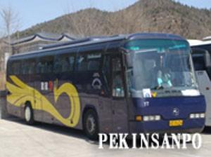 ガイド+中型バス(35名様まで)